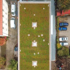 Nová zelená střecha ECOSEDUM PACK