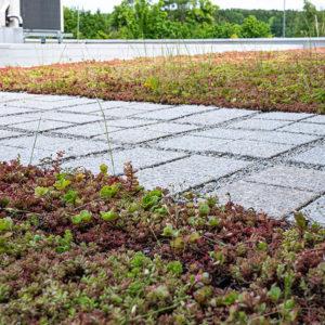 Zelená střecha ECOSEDUM PACK v kombinaci s ECORASTER BLOXX