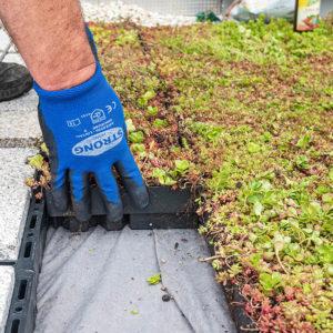 Dořez zelené střechy ECOSEDUM PACK