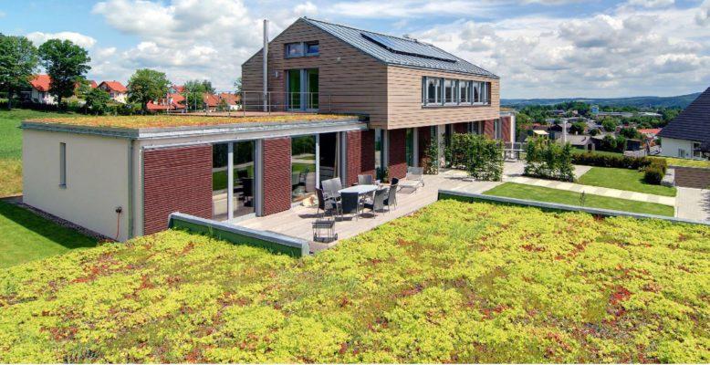 Zelená střecha ECOSEDUM PACK s dotací